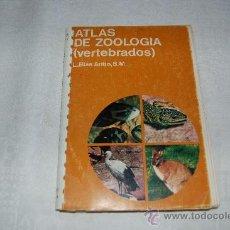 Libros de segunda mano: ATLAS DE ZOOLOGIA VERTEBRADOS. Lote 39109141