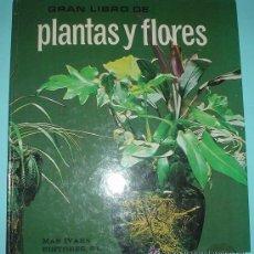 Libros de segunda mano - GRAN LIBRO DE PLANTAS Y FLORES, MAS IVARS EDITORES, SL. - 39446899