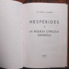 Libros de segunda mano: HESPÉRIDES O LA RIQUEZA CITRICOLA ESPAÑOLA – LUIS GARCIA GUIJARRO – 1957. Lote 40126035