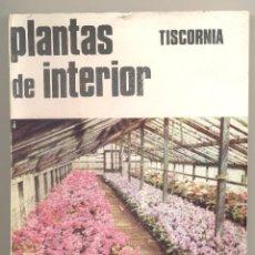 Libros de segunda mano: PLANTAS DE INTERIOR-TISCORNIA(INGENIERO AGRÓNOMO)-1974.ILUSTRADO.(HORTICULTURA, JARDINERÍA, FLORES).. Lote 40174851