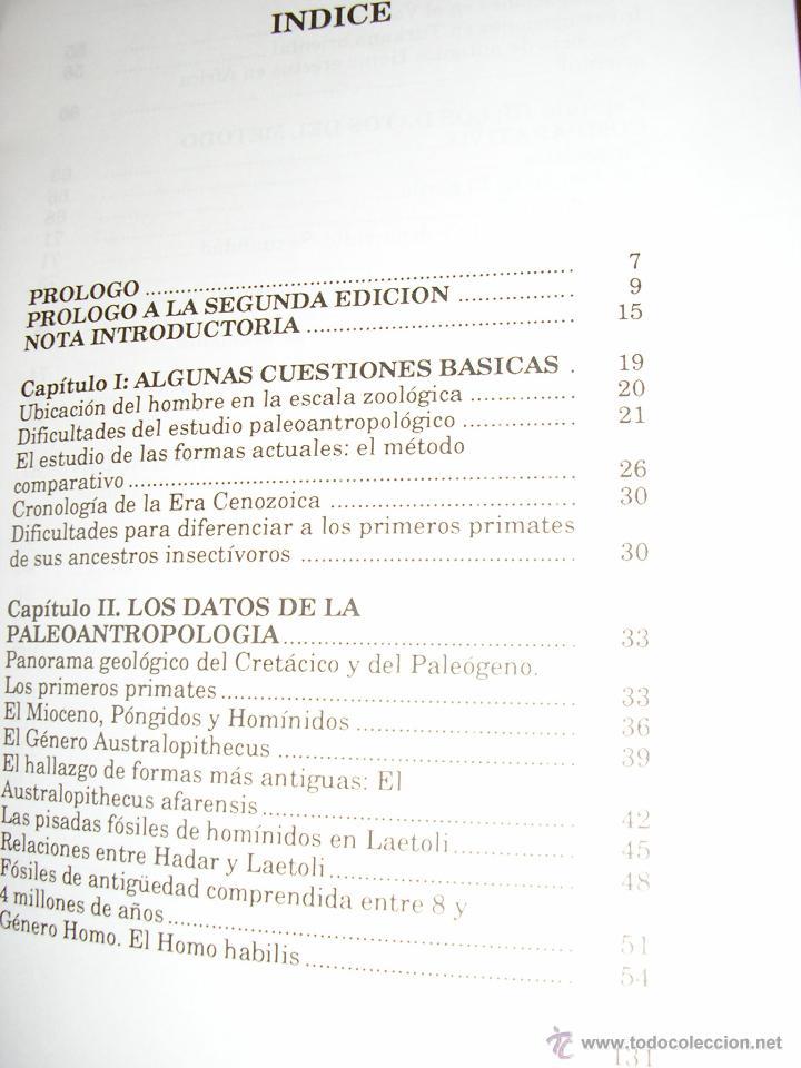 Libros de segunda mano: EL PROCESO DE HOMINIZACION, por Alberto Makinistian - Edit. Magisterio - Argentina - 1992- RARO! - Foto 2 - 40190238