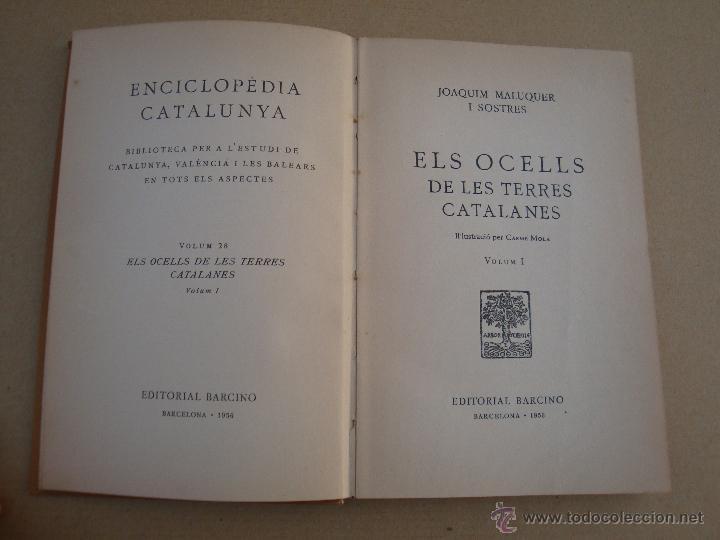 ELS OCELLS DE LES TERRES CATALANES - VOLUM 1 - EDITORIAL BARCINO 1956 (Libros de Segunda Mano - Ciencias, Manuales y Oficios - Biología y Botánica)