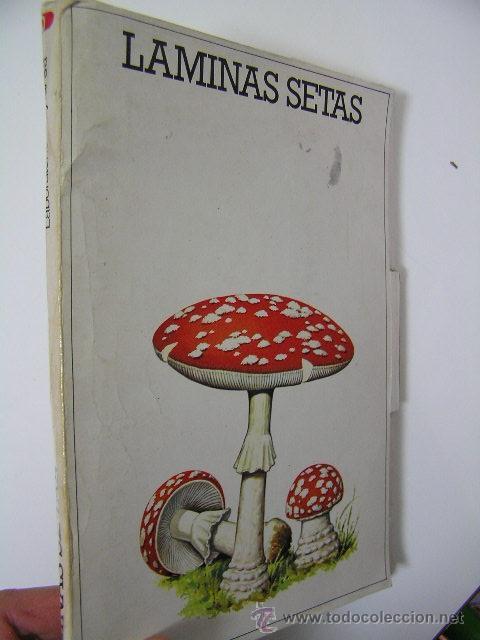 LAMINAS SETAS,LABORATORIO EMYFAR,44 LAMINAS,1976,REF BOTANICA C1 (Libros de Segunda Mano - Ciencias, Manuales y Oficios - Biología y Botánica)