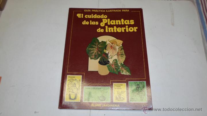 EL CUIDADO DE LAS PLANTAS DEL INTERIOR, GUIA PRACTICA ILUSTRADA, BLUME, 1990 (Libros de Segunda Mano - Ciencias, Manuales y Oficios - Biología y Botánica)