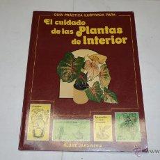 Libros de segunda mano: EL CUIDADO DE LAS PLANTAS DEL INTERIOR, GUIA PRACTICA ILUSTRADA, BLUME, 1990. Lote 41104313