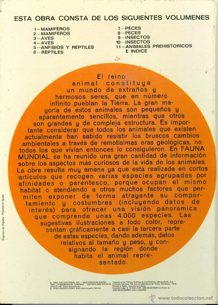 Libros de segunda mano: AVES , FAUNA MUNDIAL - VOLUMEN 3 - ERNESTO PEREZ MAS (TAPA DURA 22x30 cm.) - Foto 3 - 41110388