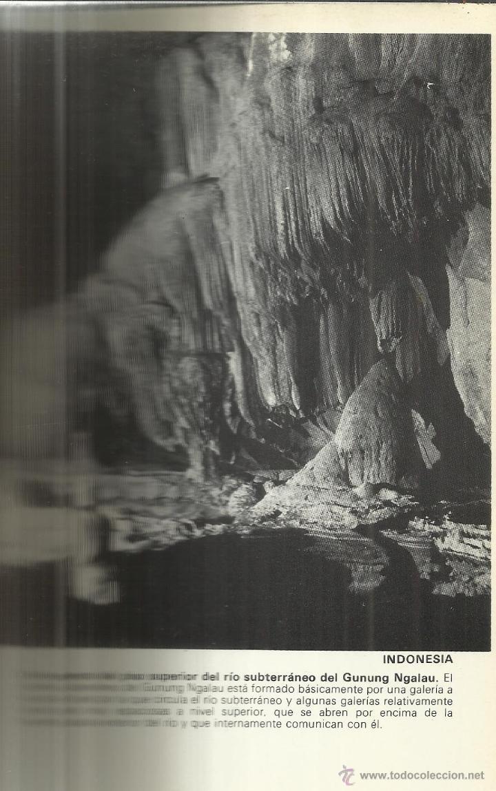 Libros de segunda mano: CUEVAS EXÓTICAS. JUAN ULLASTRE. GRIJALBO. BARCELONA. 1983 - Foto 2 - 41565849
