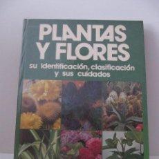 Libros de segunda mano: PLANTAS Y FLORES. SU IDENTIFICACIÓN, CLASIFICACIÓN Y SUS CUIDADOS. VICENTE MUNDINA BALAGUER. Lote 41721087