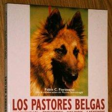 Libros de segunda mano: LOS PASTORES BELGAS POR FABIO C. FIORAVANZI DE ED. DE VECCHI EN BARCELONA 1999. Lote 42820428