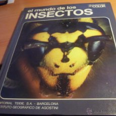Libros de segunda mano - EL MUNDO DE LOD INSECTOS. DOCUMENTAL EN COLOR. ED. TEIDE. TAPA DURA (LB11) - 43167705