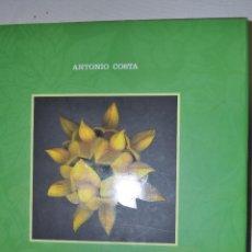 Libros de segunda mano: OUTRAS BELEZAS. FLORA SILVESTRE GALEGA. ANTONIO COSTA RM65487. Lote 43257638