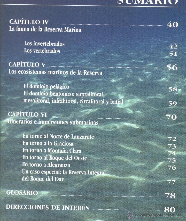 Libros de segunda mano: 2.PAISAJES SUBMARINOS DE LA ISLA GRACIOSA Y DE LOS ISLOTES DE LANZAROTE. (Canarias). - Foto 4 - 44099614