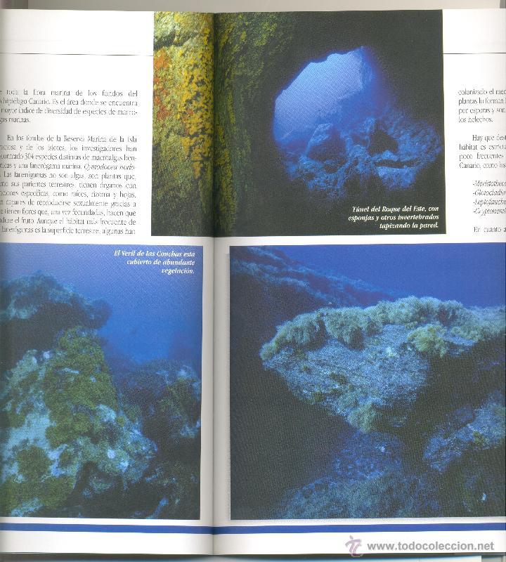 Libros de segunda mano: 2.PAISAJES SUBMARINOS DE LA ISLA GRACIOSA Y DE LOS ISLOTES DE LANZAROTE. (Canarias). - Foto 5 - 44099614