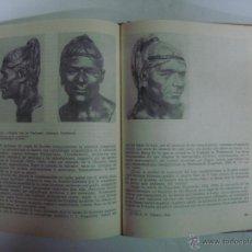 Libri di seconda mano: NIÉSTURJ. EL ORIGEN DEL HOMBRE. ED. MIR 1984. MUY ILUSTRADO.FOLIO MENOR.. Lote 44117174