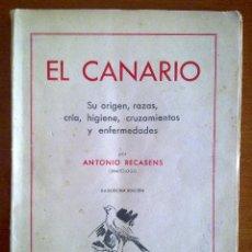 Libros de segunda mano: EL CANARIO, ANTONIO RECASENS. Lote 44256486