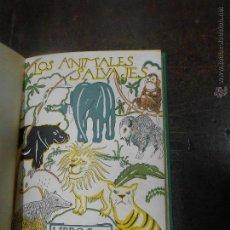 Libros de segunda mano: ANGEL CABRERA LOS ANIMALES SALVAJES MADRID 1953 COLECCION LIBROS DE LA NATURALEZA ESPASA CALPE. Lote 44304366