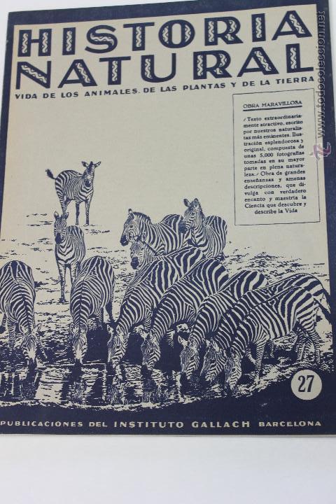 HISTORIA NATURAL BOTANICA Nº 27 INSTITUTO GALLACH BARCELONA (Libros de Segunda Mano - Ciencias, Manuales y Oficios - Biología y Botánica)