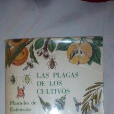 Libros de segunda mano: LIBRO/ALBUM DEL AÑO 1971 LAS PLAGAS DE LOS CULTIVOS. Lote 44464512