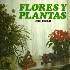 Libros de segunda mano: FLORES Y PLANTAS EN CASA - VIOLET STEVENSON - EDITORIAL HMB - 1978. Lote 44880903