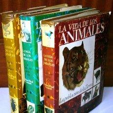Libros de segunda mano: LA VIDA DE LOS ANIMALES 3T POR PIERRE PAUL GRASSÉ DE PLANETA EN BARCELONA 1978 5ª EDICIÓN. Lote 26789178