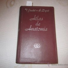 Libros de segunda mano: ATLAS MANUAL DE ANATOMÍA- V. PAUCHET Y S. DUPRET. ED GUSTAVO GILI (3ª EDICIÓN). Lote 45323129