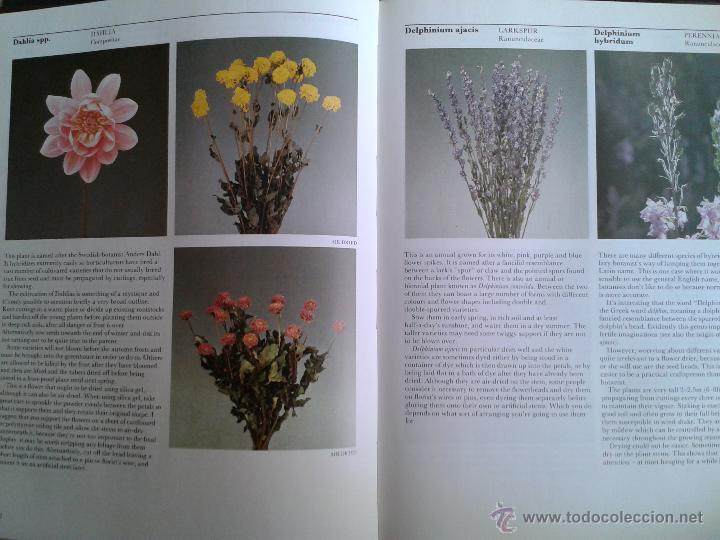 Libros de segunda mano: Flowers. Growing. Drying. Preserving. Cormack & Carter 1988. Copia de colección particular editorial - Foto 2 - 45743811