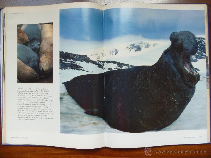 Libros de segunda mano: Los reinos del mar de national Geographic - Foto 2 - 45830883