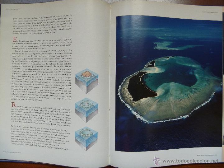 Libros de segunda mano: Los reinos del mar de national Geographic - Foto 3 - 45830883