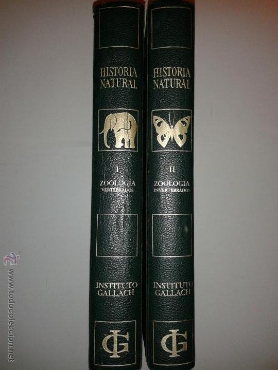 HISTORIA NATURAL ZOOLOGÍA TOMOS I Y II VERTEBRADOS E INVERTEBRADOS 1971 INSTITUTO GALLACH (Libros de Segunda Mano - Ciencias, Manuales y Oficios - Biología y Botánica)