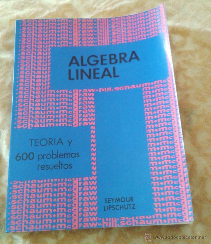 ALGEBRA LINEAL. TEORIA Y 600 PROBLEMAS RESUELTOS (Libros de Segunda Mano - Ciencias, Manuales y Oficios - Física, Química y Matemáticas)