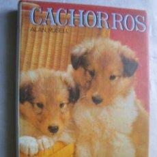 Libros de segunda mano - CACHORROS. RUSELL, Alan. 1986 - 47066172