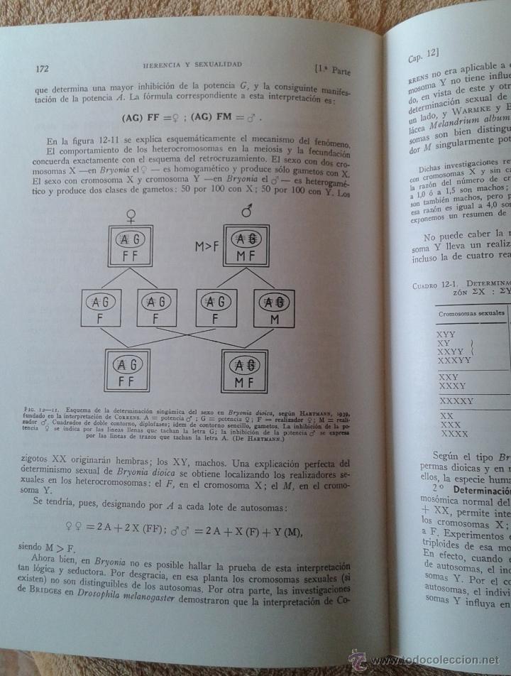 Libros de segunda mano: BIOLOGIA GENERAL II ALVARADO - Foto 3 - 47181324
