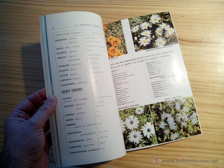 Libros de segunda mano: Libro Catálogo LA HORTICOLA LINARENSE, S.A. LINARES ANDUJAR (JAÉN) 1965 - Foto 2 - 47387616