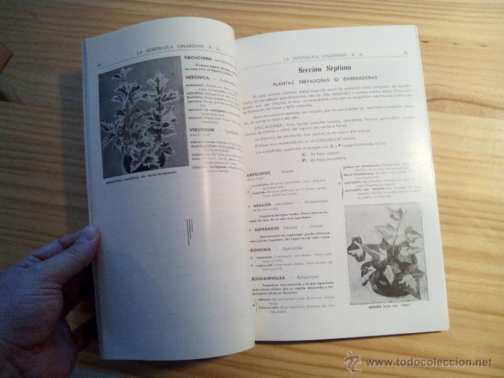 Libros de segunda mano: Libro Catálogo LA HORTICOLA LINARENSE, S.A. LINARES ANDUJAR (JAÉN) 1965 - Foto 3 - 47387616