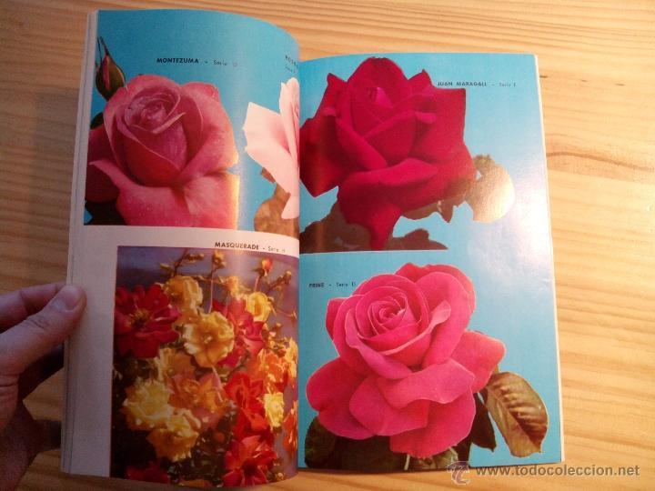 Libros de segunda mano: Libro Catálogo LA HORTICOLA LINARENSE, S.A. LINARES ANDUJAR (JAÉN) 1965 - Foto 4 - 47387616