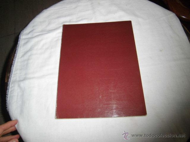 Libros de segunda mano: EL CUIDADO DE LAS PLANTAS DE INTERIOR GUIA PRACTICA ILUSTRADA.EDITORIAL BLUME 1982 - Foto 6 - 47866534