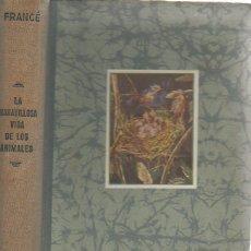 Libros de segunda mano: LA MARAVILLOSA VIDA DE LOS ANIMALES. R. H. FRANCÉ. LABOR, 1ª EDICIÓN, 2ª REIMPRESIÓN, 1950. Lote 48845971