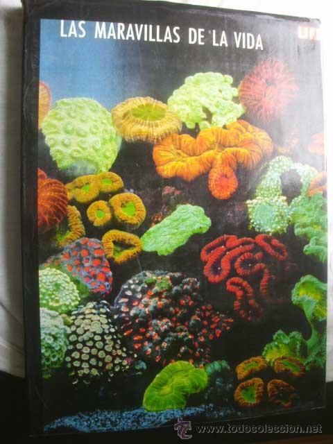 LAS MARAVILLAS DE LA VIDA. 1968 (Libros de Segunda Mano - Ciencias, Manuales y Oficios - Biología y Botánica)