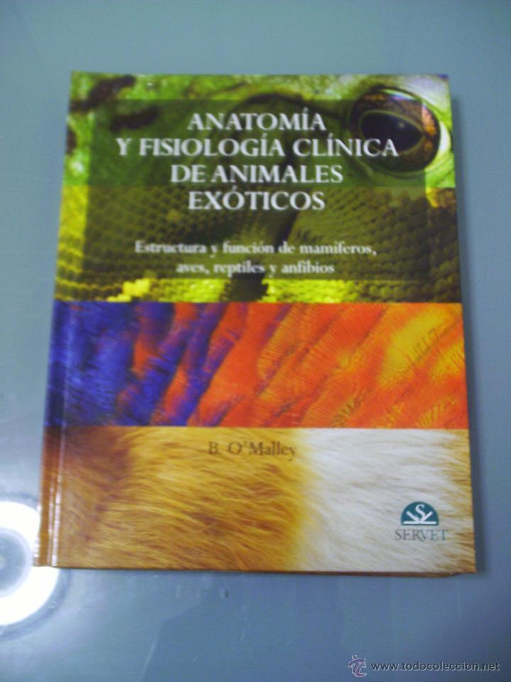 anatomía y fisiología clínica de animales exóti - Comprar Libros de ...