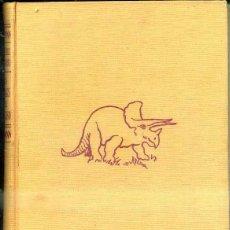 Libros de segunda mano: GONZÁLEZ DE GUZMÁN : LOS ENIGMAS DEL UNIVERSO (LABOR, 1966) . Lote 49561918