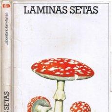 CARPETA LAMINAS SETAS - LABORATORIOS EMYFAR