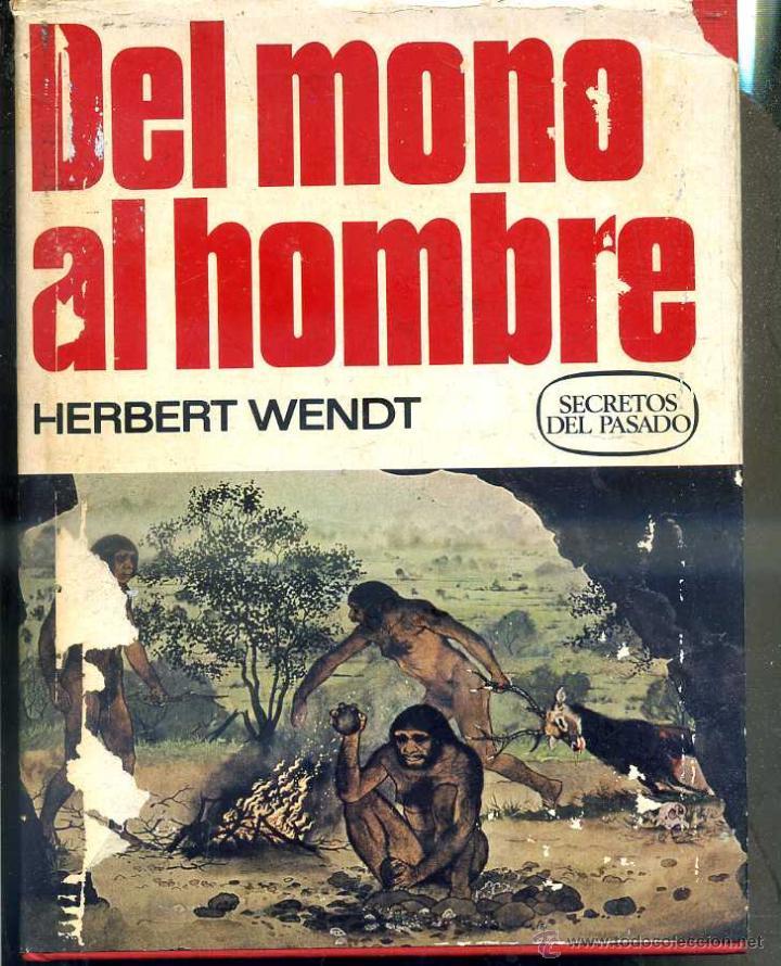 WENDT : DEL MONO AL HOMBRE (BRUGUERA, 1976) PRIMERA EDICIÓN (Libros de Segunda Mano - Ciencias, Manuales y Oficios - Paleontología y Geología)