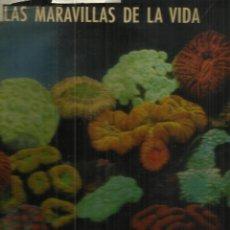 Libros de segunda mano: LAS MARAVILLAS DE LA VIDA. EDITORIAL LUIS MIRACLE. BARCELONA. 1967. Lote 50317699