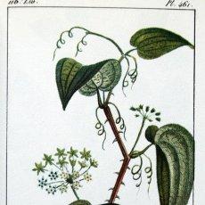 Libros de segunda mano: 1829 - FLORA PINTORESCA - MEDICINAL - ILUSTRADO - COLONIAS ESPAÑOLAS, FRANCESAS... - FACSÍMIL. Lote 50509485