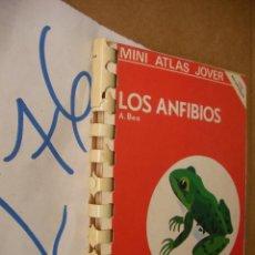Libros de segunda mano: MINI ATLAS JOVER - LOS ANFIBIOS - BEA - ENVIO GRATIS A ESPAÑA . Lote 50570032
