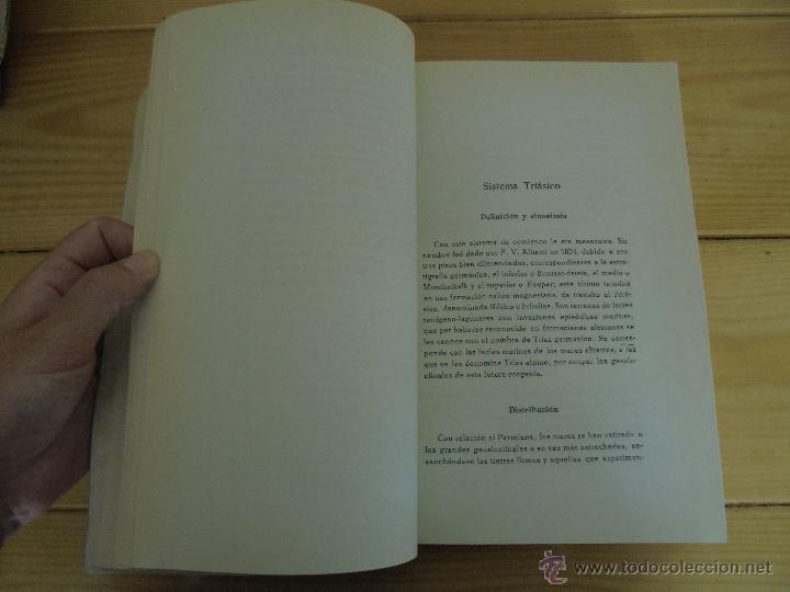 Libros de segunda mano: INSTITUTO GEOLOGICO Y MINERO DE ESPAÑA 7 TOMOS. MAPA GEOLOGICO DE ESPAÑA HOJA DE CANTILLANA. VER FOT - Foto 21 - 50677268