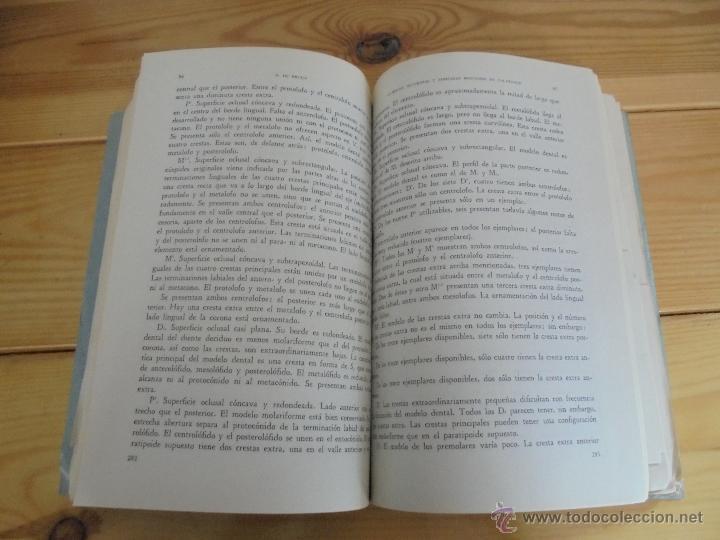 Libros de segunda mano: INSTITUTO GEOLOGICO Y MINERO DE ESPAÑA 7 TOMOS. MAPA GEOLOGICO DE ESPAÑA HOJA DE CANTILLANA. VER FOT - Foto 62 - 50677268