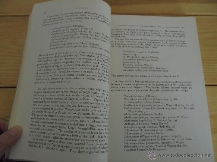 Libros de segunda mano: INSTITUTO GEOLOGICO Y MINERO DE ESPAÑA 7 TOMOS. MAPA GEOLOGICO DE ESPAÑA HOJA DE CANTILLANA. VER FOT - Foto 95 - 50677268