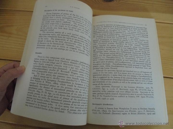 Libros de segunda mano: INSTITUTO GEOLOGICO Y MINERO DE ESPAÑA 7 TOMOS. MAPA GEOLOGICO DE ESPAÑA HOJA DE CANTILLANA. VER FOT - Foto 120 - 50677268