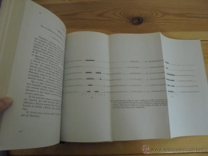 Libros de segunda mano: INSTITUTO GEOLOGICO Y MINERO DE ESPAÑA 7 TOMOS. MAPA GEOLOGICO DE ESPAÑA HOJA DE CANTILLANA. VER FOT - Foto 139 - 50677268